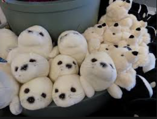 Save the seals!