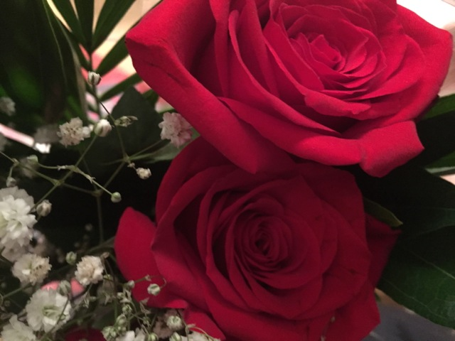 Roses: every girls' Valentine's Day wish?
