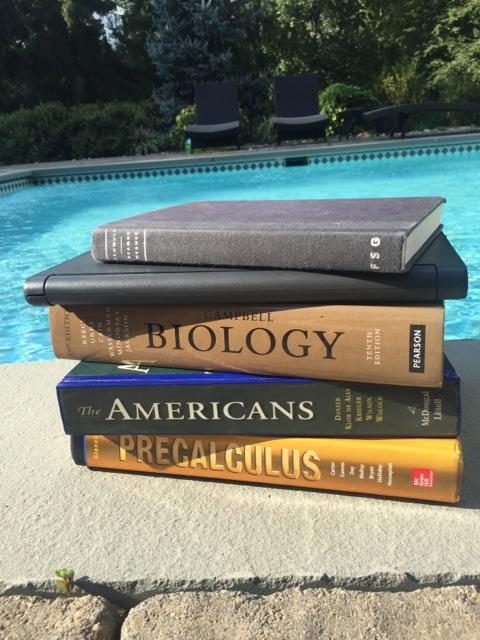 Summer homework invading the pool