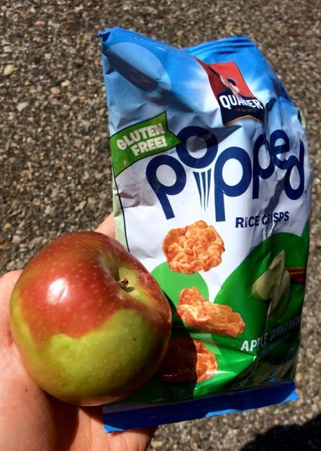 An apple and rice cakes are two popular on-the-go gluten free snacks