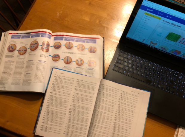 Endless vocabulary terms, diagrams, and school work are given to students to memorize, and then just simply transfer to quizzes and projects.