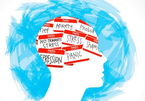 Anxiety and Mental Health Care in Madison High School