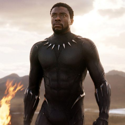 Odin and the Black Panther